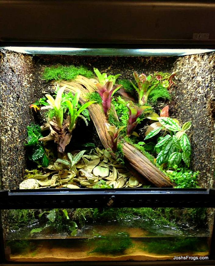 Terrarium Construction Josh S Frogs How To Guides