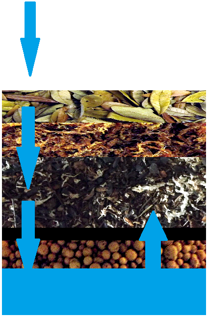 Vivariums From The Ground Up Josh S Frogs How To Guides