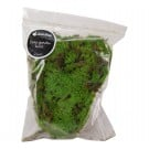 Decorative Fairy Garden Moss (2 Quart)