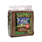 T-Rex Forest Bed (Giant)