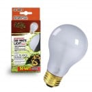 Zilla Day White Light Incandescent Bulb (50 Watt)